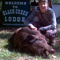 Alabama Hog Hunting